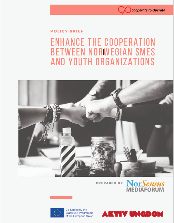 HOW CAN WE ENHANCE THE COLLABORATION BETWEEN NORWEGIAN SMES AND YOUTH ORGANIZATIONS?